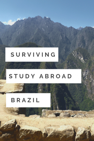 Study Abroad in Brazil - Footloose Juice