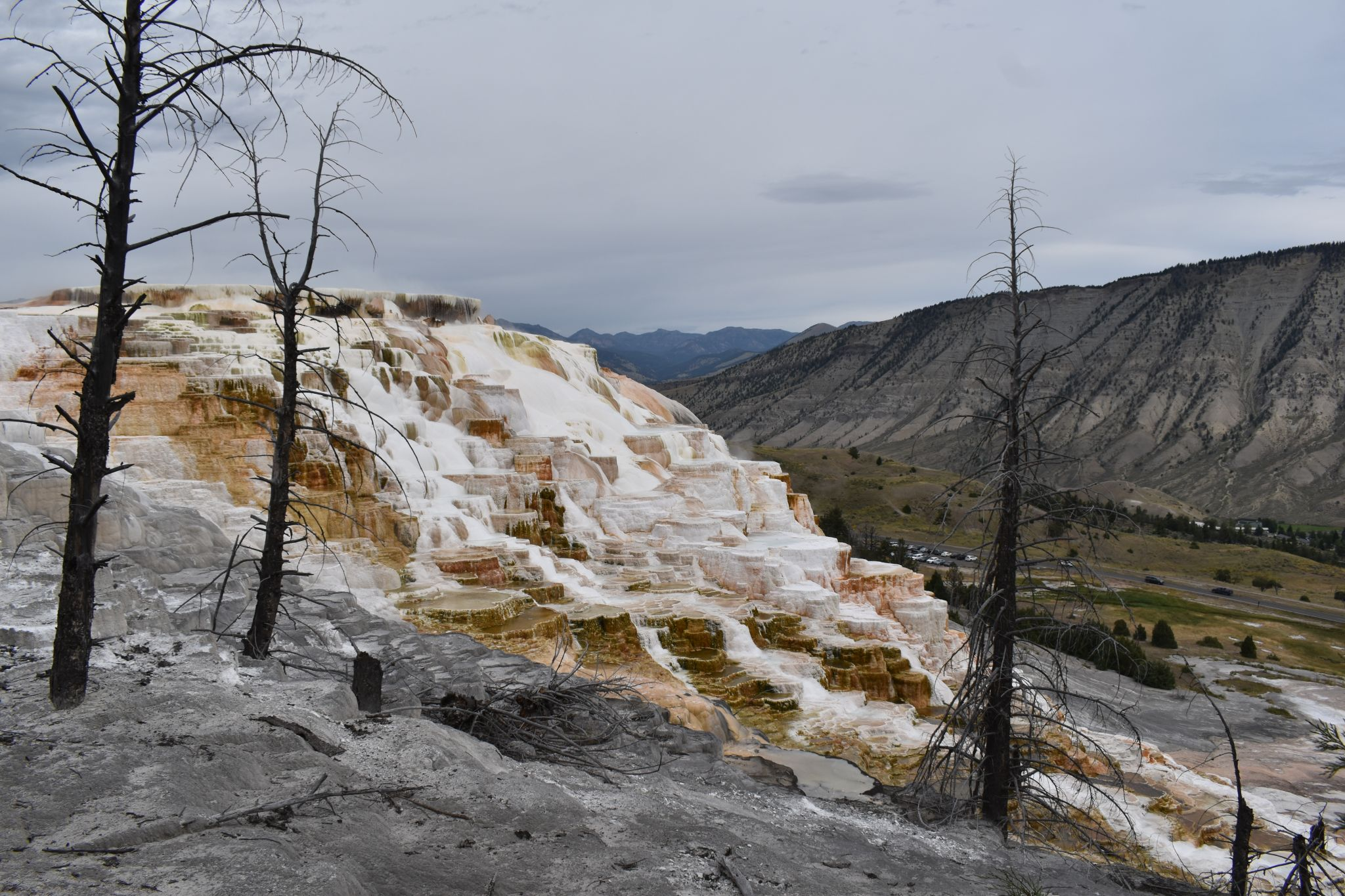 Mammoth-Springs-in-Yellow-Stone-National-Park
